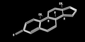 androstadienone feromon