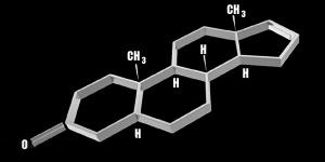 androstenone feromon