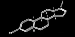 androsterone feromon